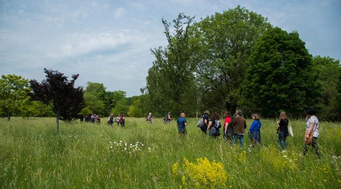 Échanges d'expériences à l'arboretum de Versailles-Chèvreloup