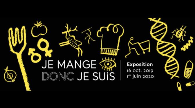 11/2019 : Musée de l'Homme