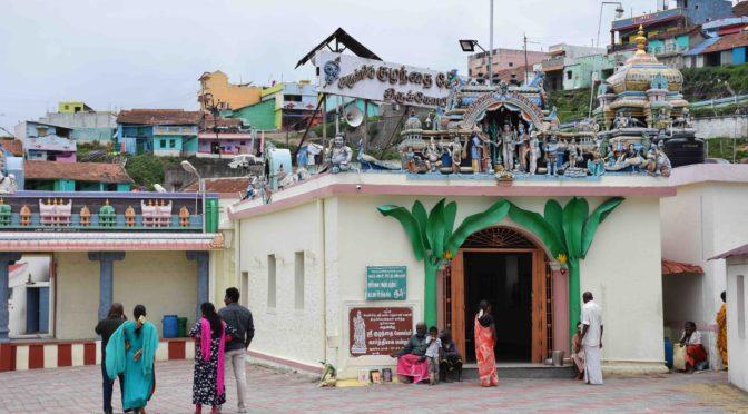 Plantes, altérité religieuse et statues ayurvédiques en Inde